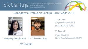 Los Premios cicCartuja−Ebro Foods reconocen la excelencia científica de seis jóvenes investigadores