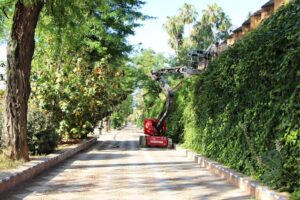 El Real Alcázar acomete la restauración de la tapia almenada de los Jardines de Murillo