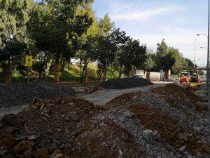 Plan de protección para la arboleda afectada por el nuevo colector de Emasesa