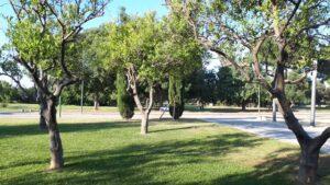 El Parque del Alamillo renueva su certificado como Jardín de Excelencia Ecológica