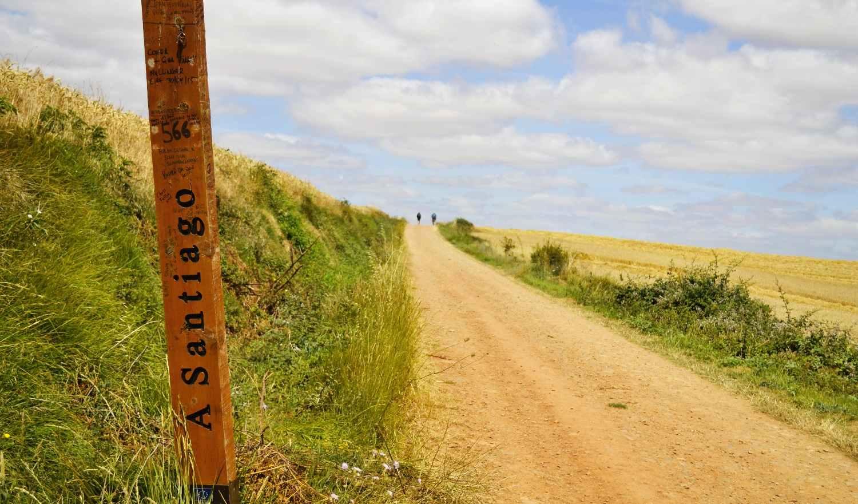 El Camino, la mejor alternativa y referente para retomar la normalidad