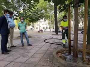 El Ayuntamiento refuerza el riego en verano y otoño para las nuevas plantaciones de árboles