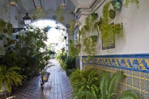 Lee más sobre el artículo Un otoño para recuperar la historia de los corrales y los patios de Triana