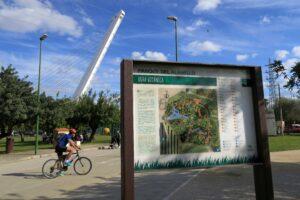 Lee más sobre el artículo El Parque del Alamillo recupera las rutas botánicas y las visitas guiadas al Vivero